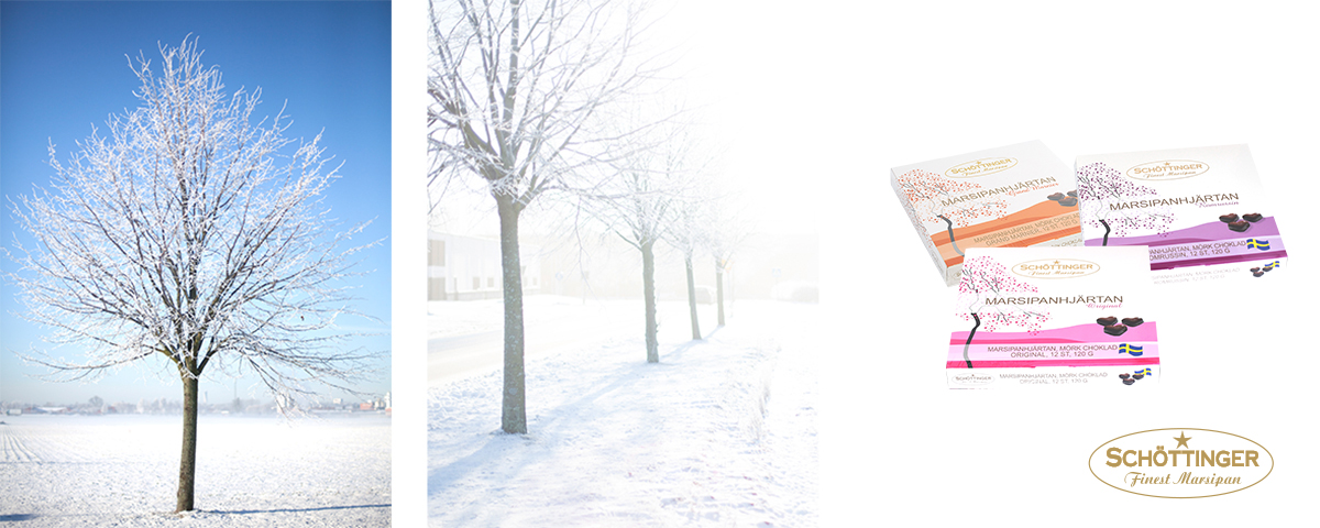 banner_winter_2016_sc_new.jpg